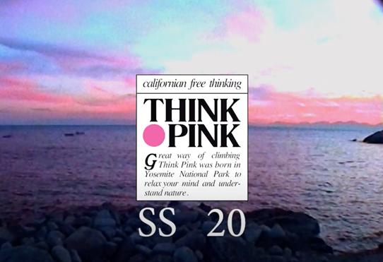 Think Pink - Make Up Artists Kassnadra Frua De Angeli